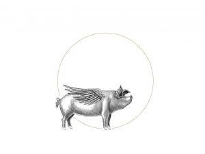 DP_Pig Progressions_2