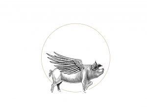 DP_Pig Progressions_3