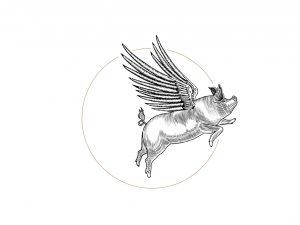 DP_Pig Progressions_5